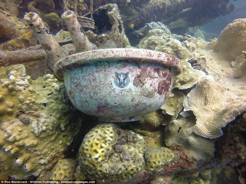Посуда с корабля