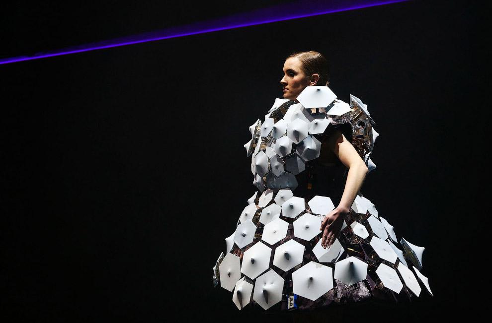 Международный конкурс дизайна World of WearableArt (WOW)
