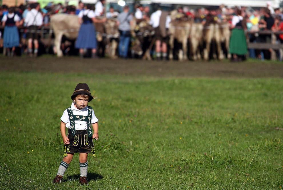 Суровые баварские фермеры