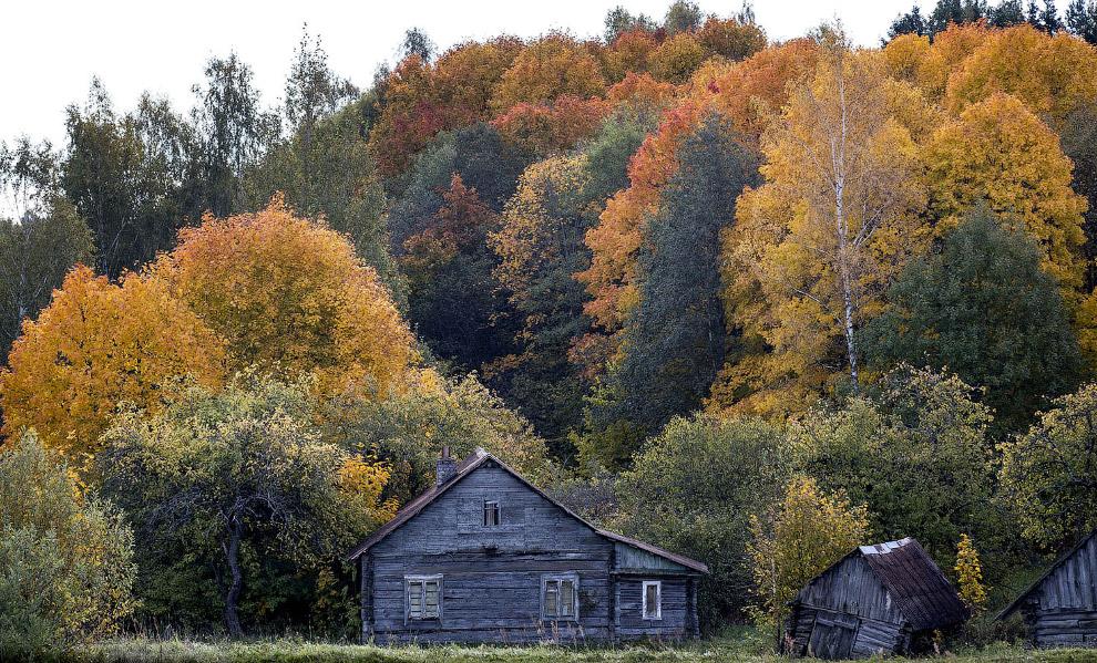 Осень возле маленького городка Игналина, Литва