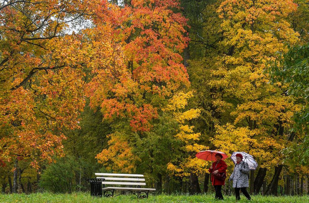 Осень в Александровском парке