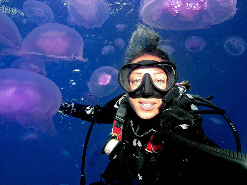 Селфи с медузами в Шарм-Эль-Шейхе, Египет
