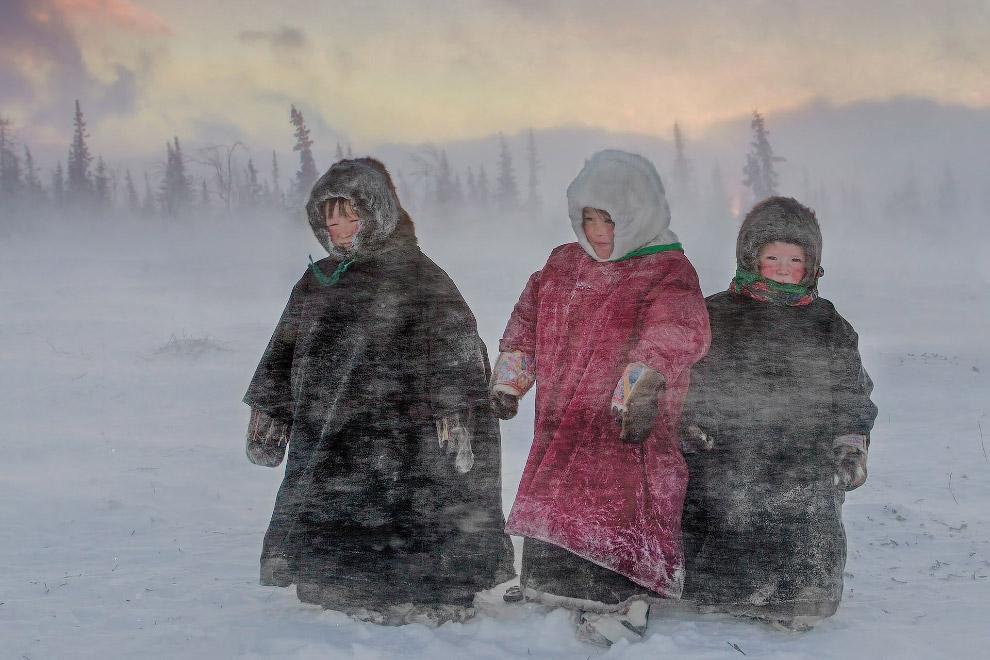 Мороз и вьюга на севере России