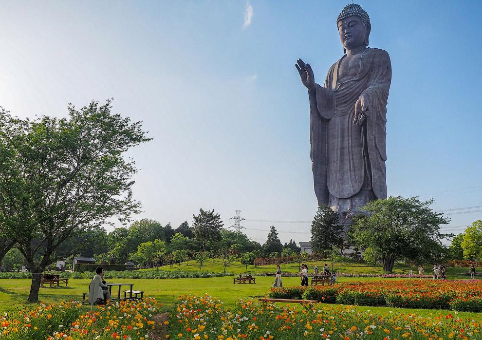 Статуя Будды Амитабхи в японском городе Усику