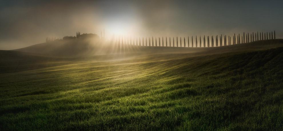 Весеннее утро в Тоскане, Италия