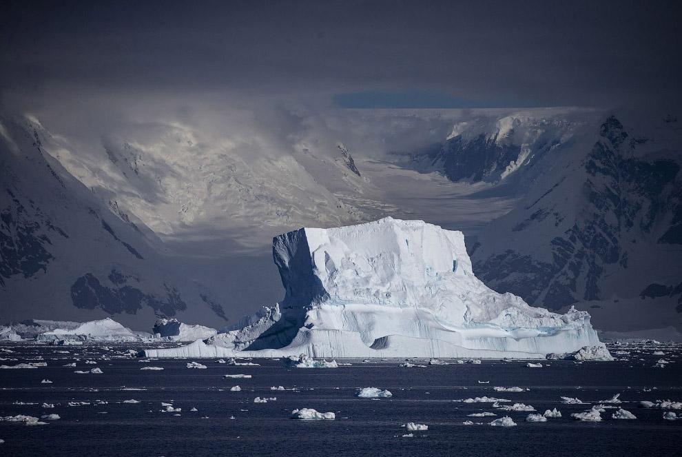 Льодовики і айсберги