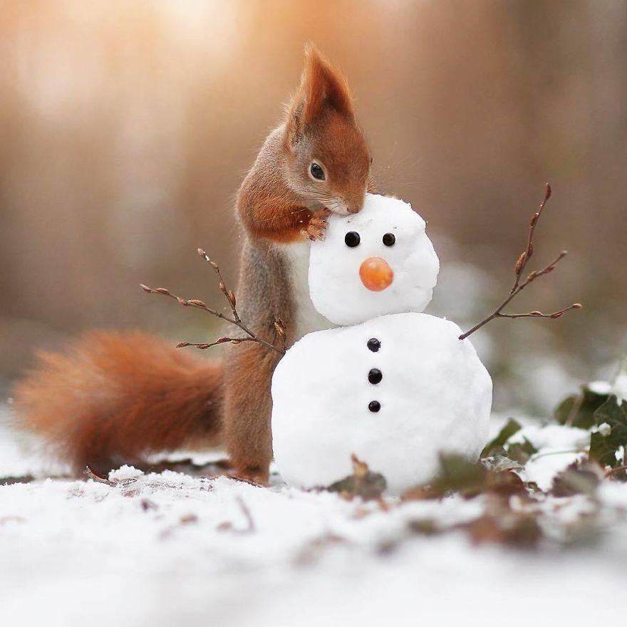 Белка и снеговик