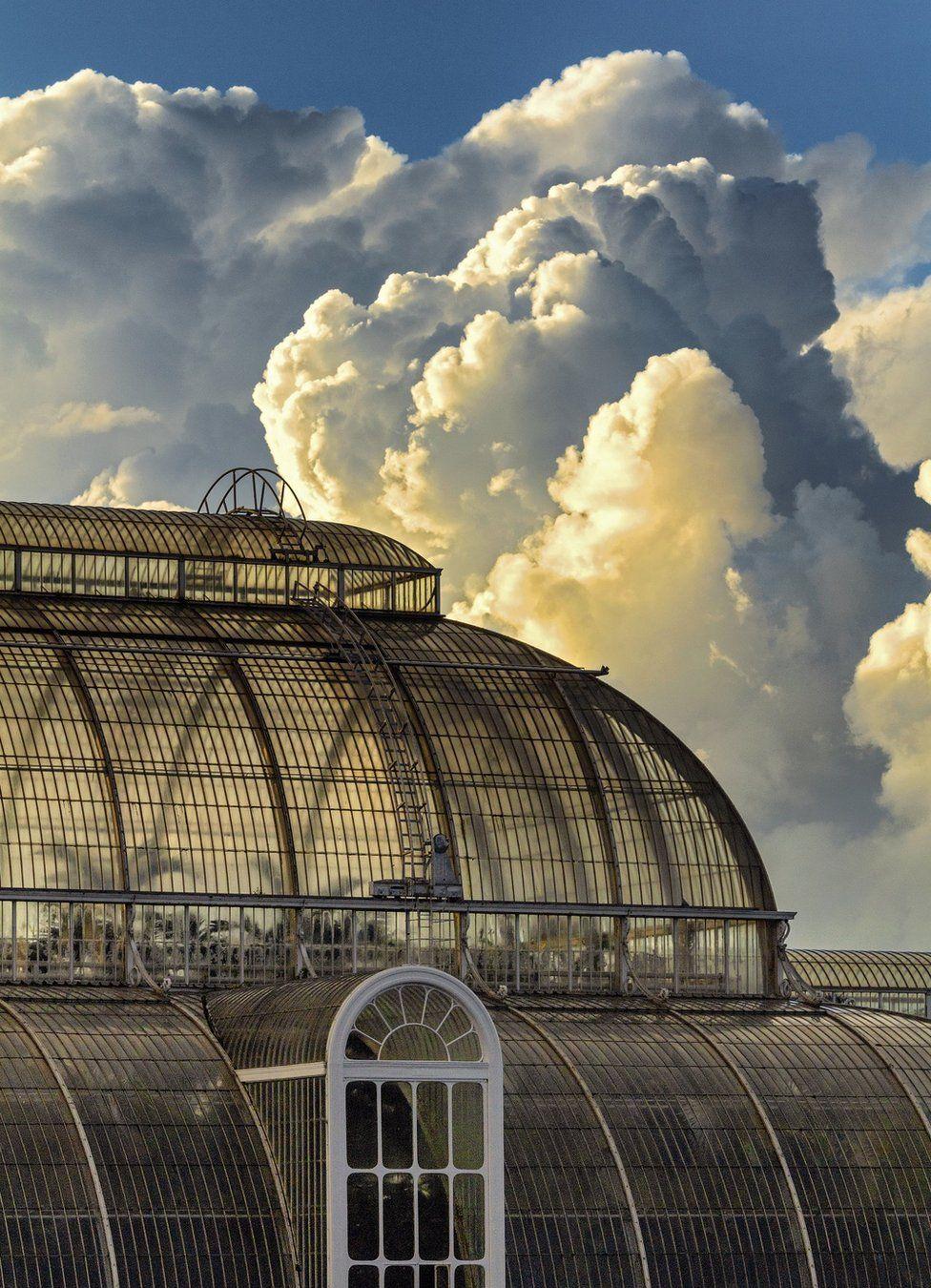 Королевские ботанические сады Кью в юго-западной части Лондона.