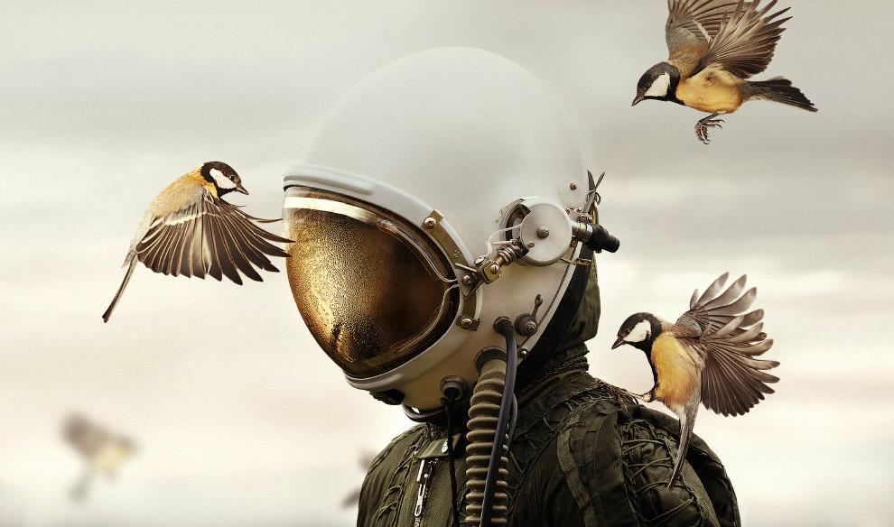 Человек в шлеме и 2 птицы
