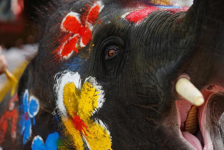 Сонгкран 2019: тайский Новый год