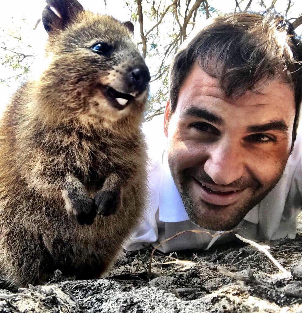 Квокка и великий теннисист Роджет Федерер