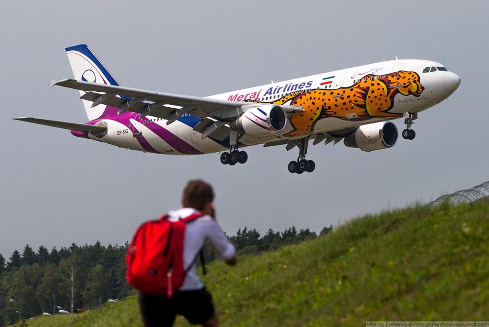 Споттер ловит Meraj Airlines Airbus A300-600 во Внуково