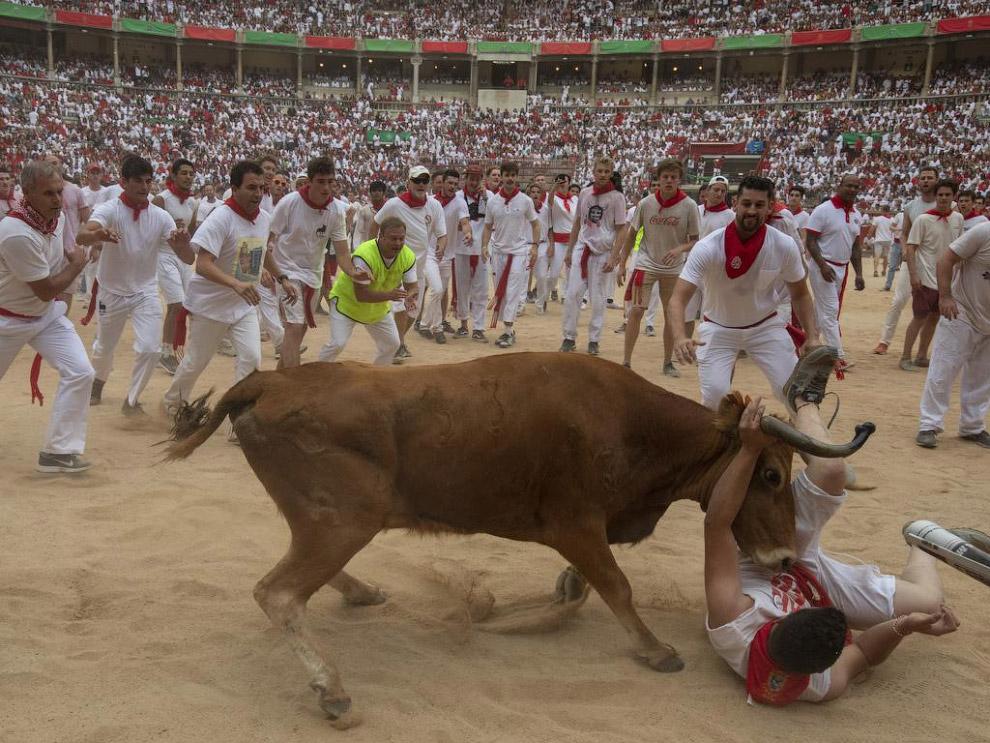 Бігу биків: Сан Фермін 2019