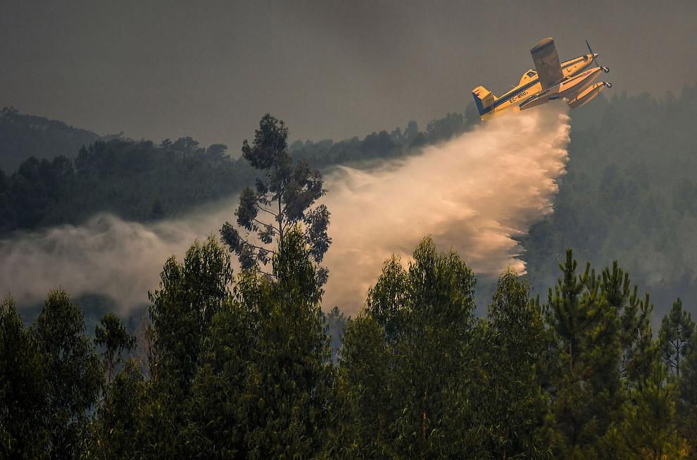 Тушение пожара самолетами