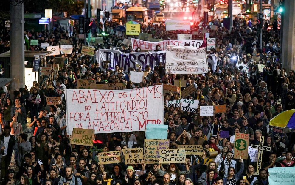 Политика президента Жаира Болсонару уничтожает Амазонию