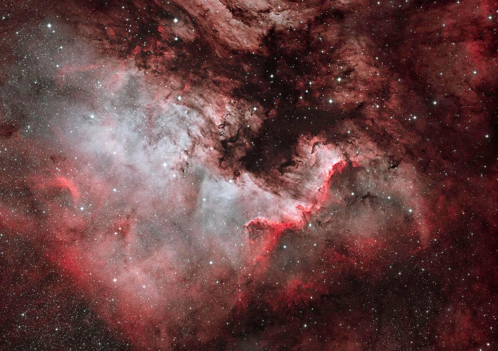 Туманность NGC 7000 «Северная Америка» в созвездии Лебедь