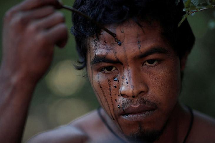 Лесные Стражи джунглей Амазонки