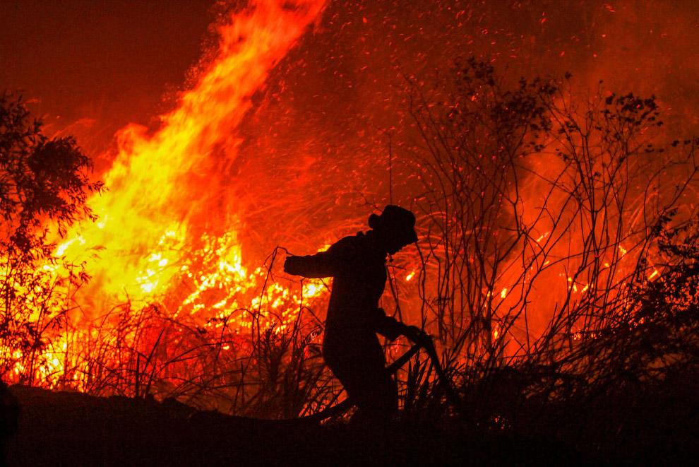 Пожарные пытаются что-то сделать, провинция Южная Суматра