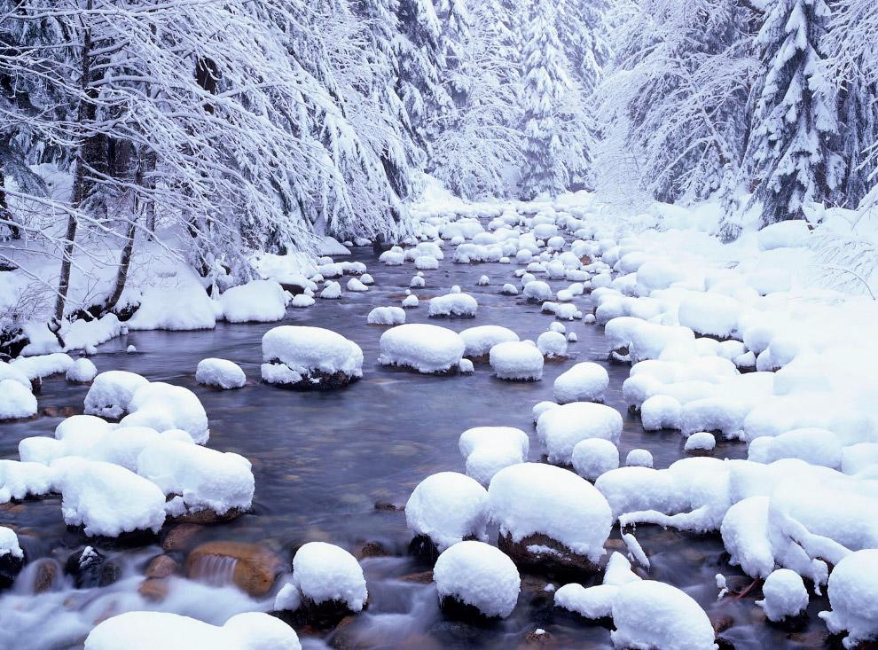 Снег в национальном лесу Маунт-Бейкер-Сноквалми