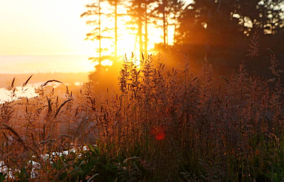 Закат над пляжем Калалоч в Олимпийском национальном парке.