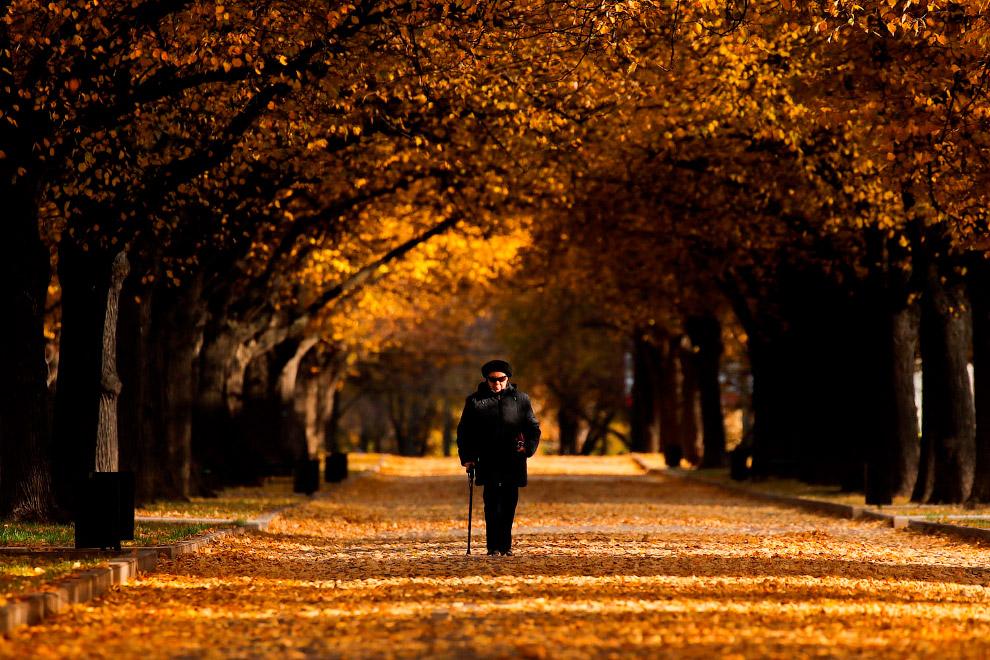 Осенний парк в Москве, Россия