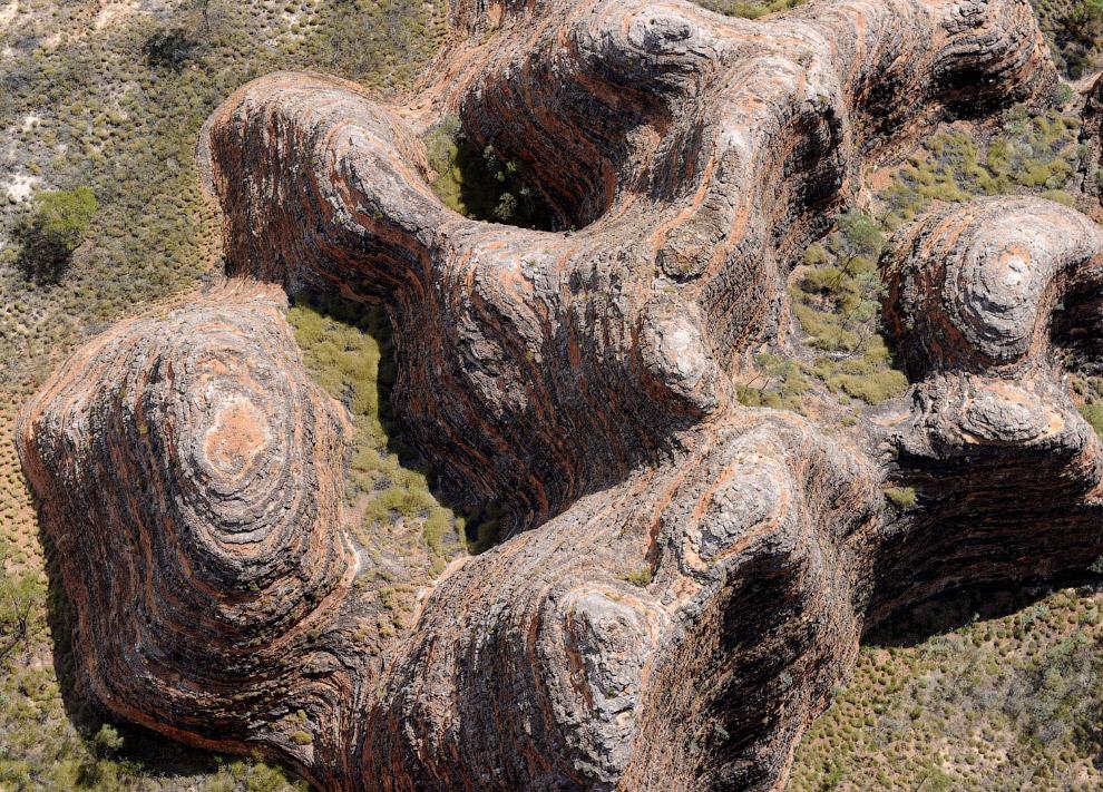 Национальный парк Пурнулулу и необычные ульи