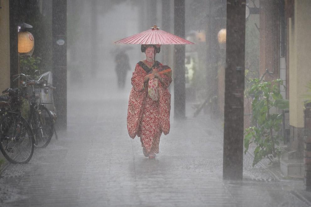 Дождь в Киото