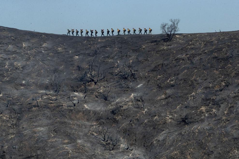 Выгоревшая земля и пожарные