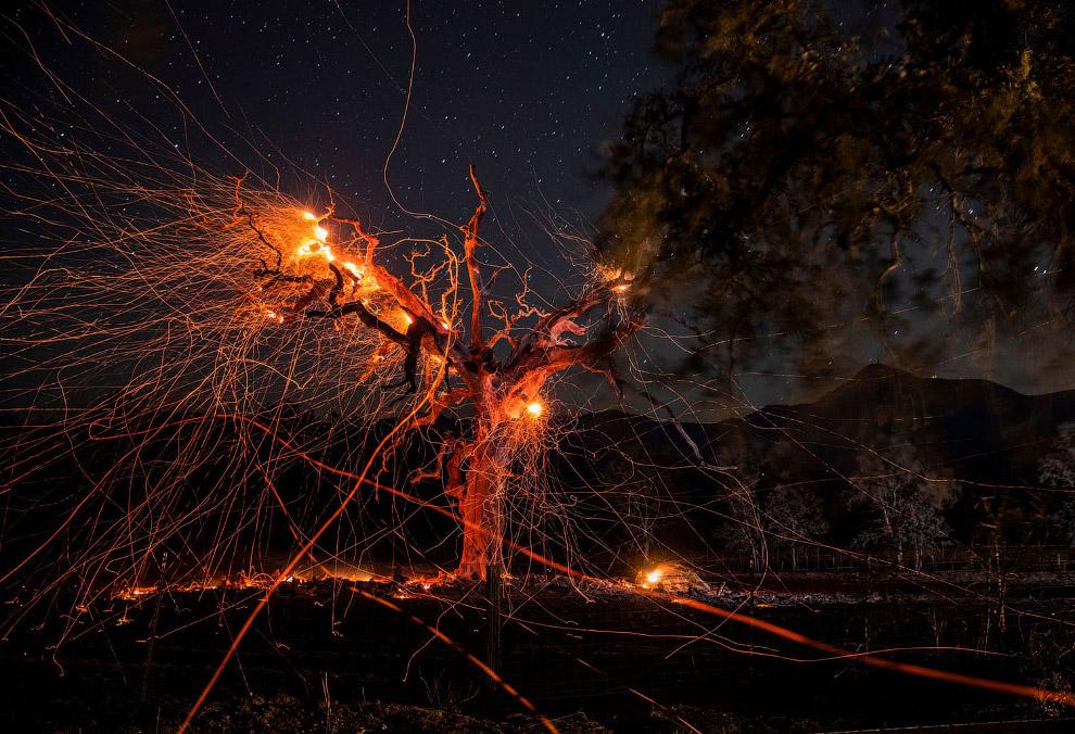Пожежі в Каліфорнії 2019