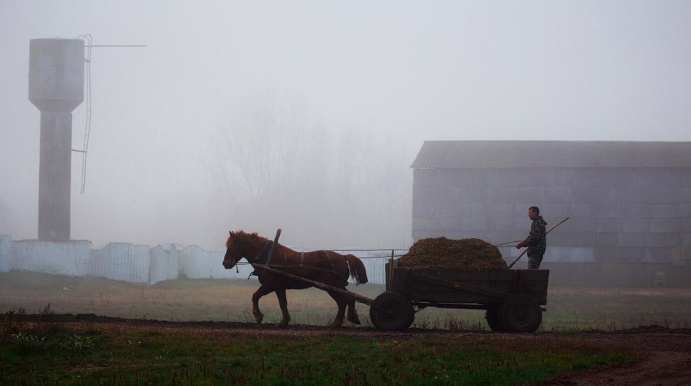 Село Крутилавичи, Беларуссия