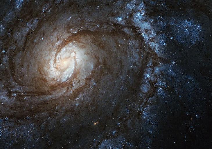 Спиральная галактика M 100
