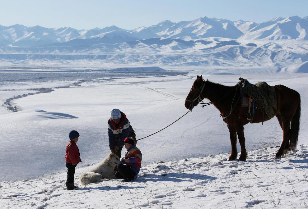 Орлиная охота в Казахстане