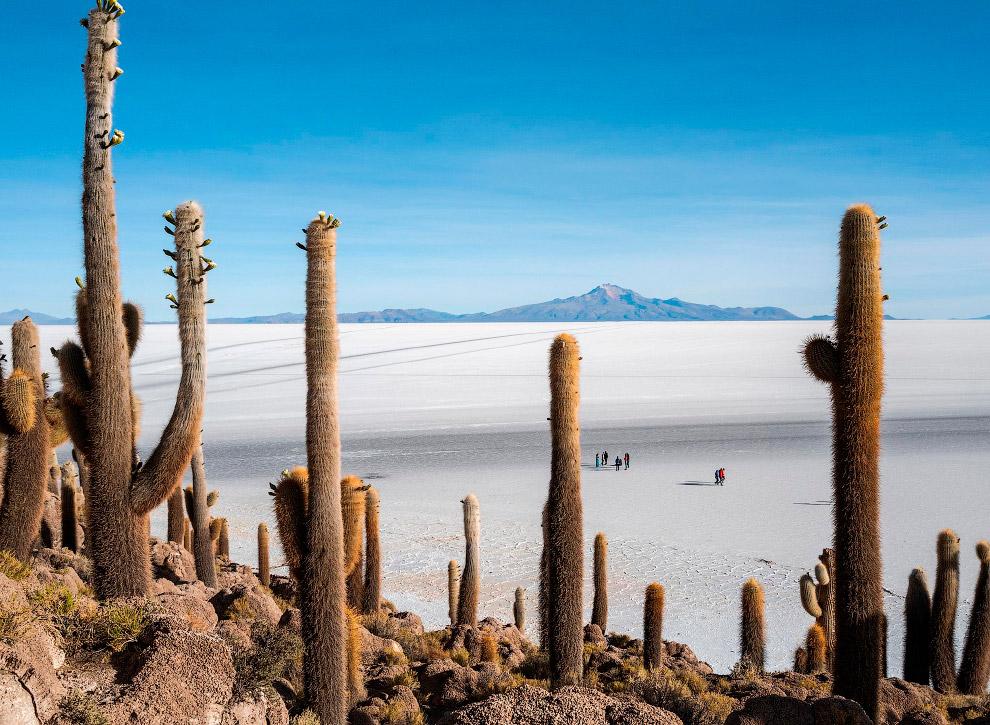 Солончак Салар де Уюни в Боливии