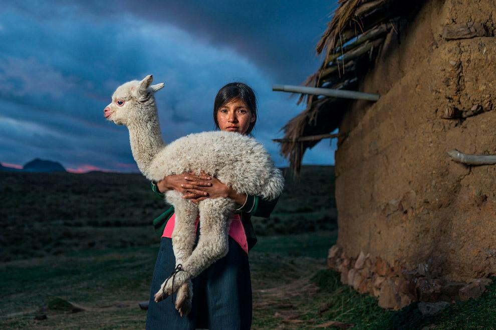 Girl with alpaca in a village in Peru