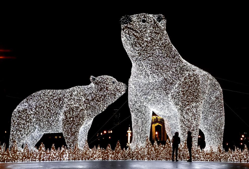 Медведи в парке Горького в Москве