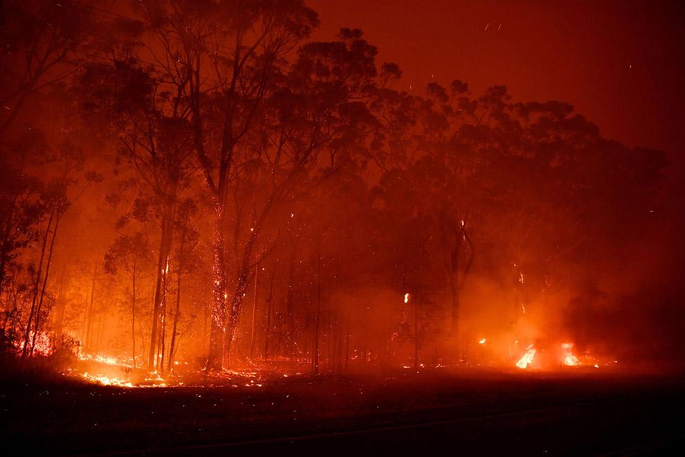 Лесные пожары возле города Сассекс-Инлет