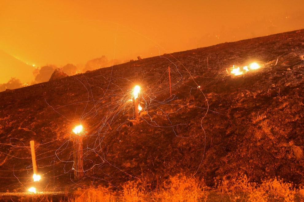 Горящий лес возле Гейсервилла, Калифорния
