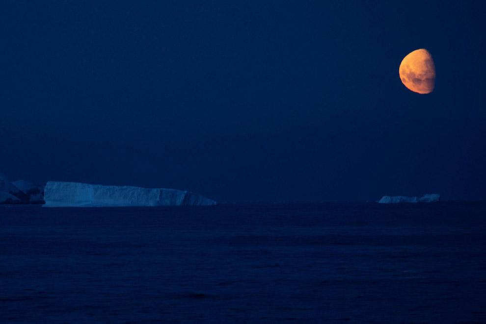 Луна и айсберги