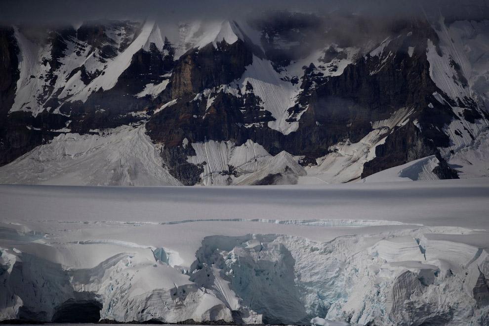 Перепись пингвинов в Антарктиде