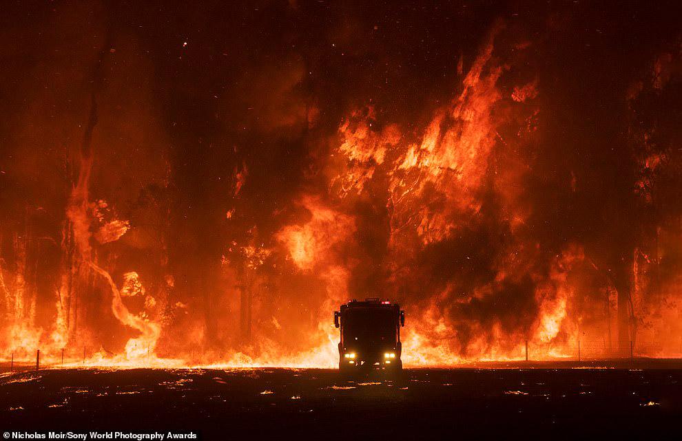 Пожары на юго-востоке Австралии