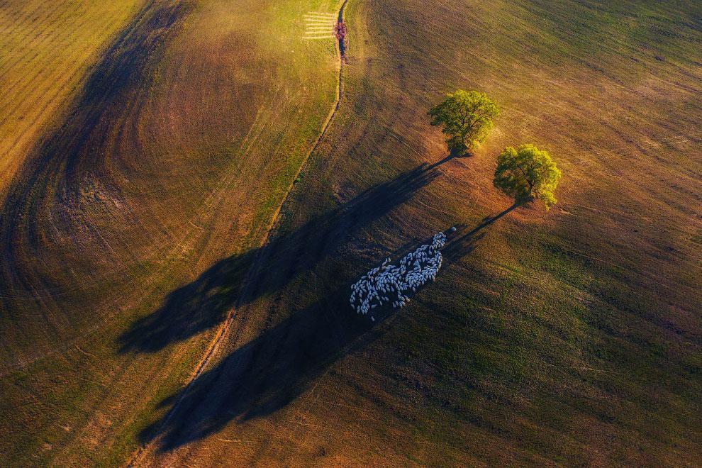 Аэрофотоснимок, сделанный в Тоскане в осеннем свете