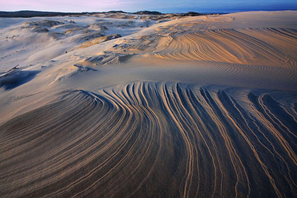 Зимний пейзаж на песчаных дюнах Серебряного озера