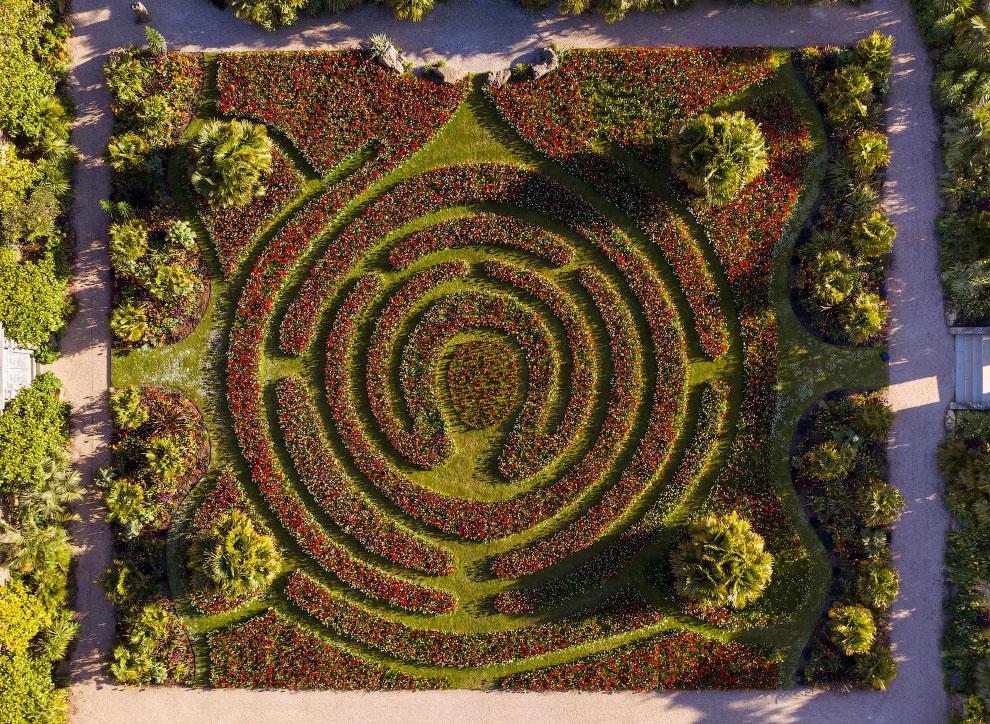 Цветочный лабиринт в Англии