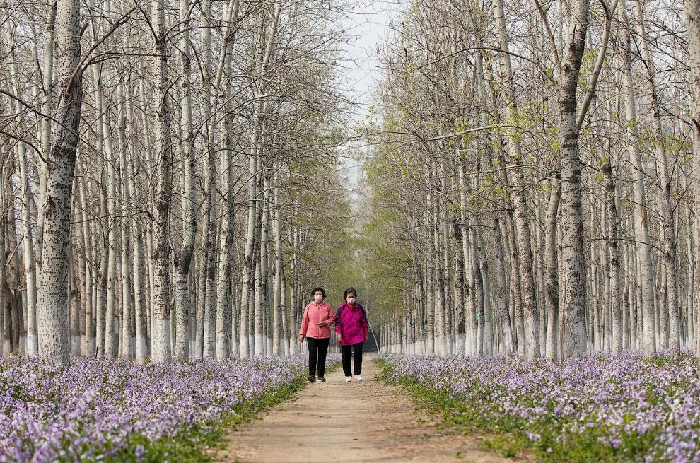 Люди в парке в Пекине