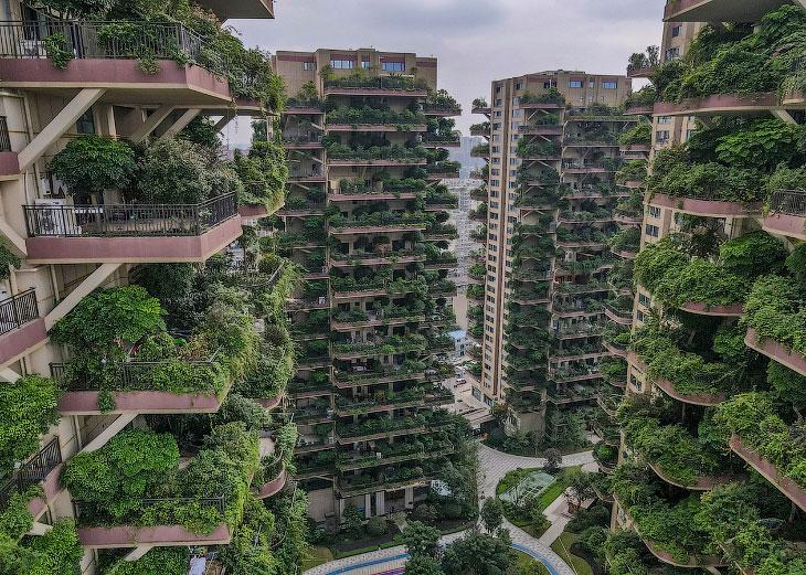 Постапокалипсис: Комплекс зеленых небоскребов в Китае