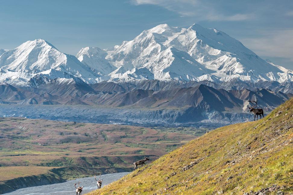 Прогулка по Аляске