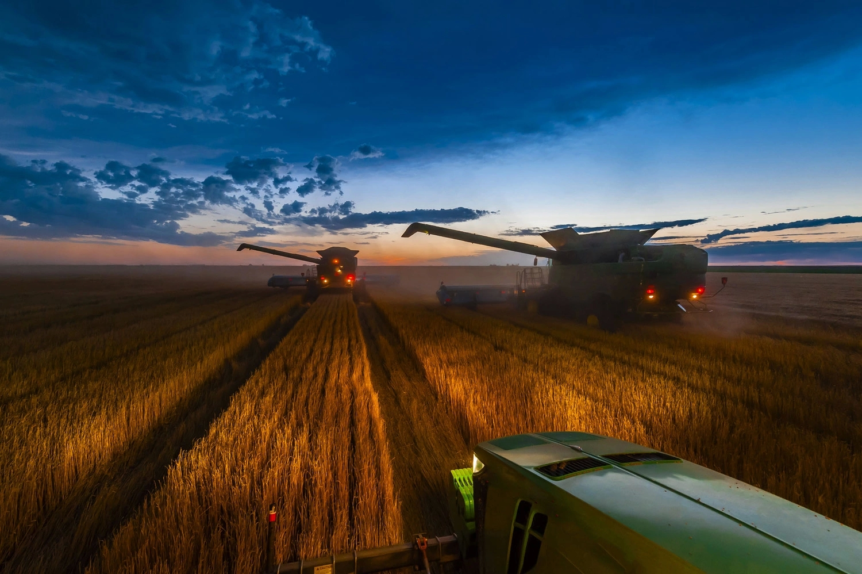 Комбайны убирают пшеницу
