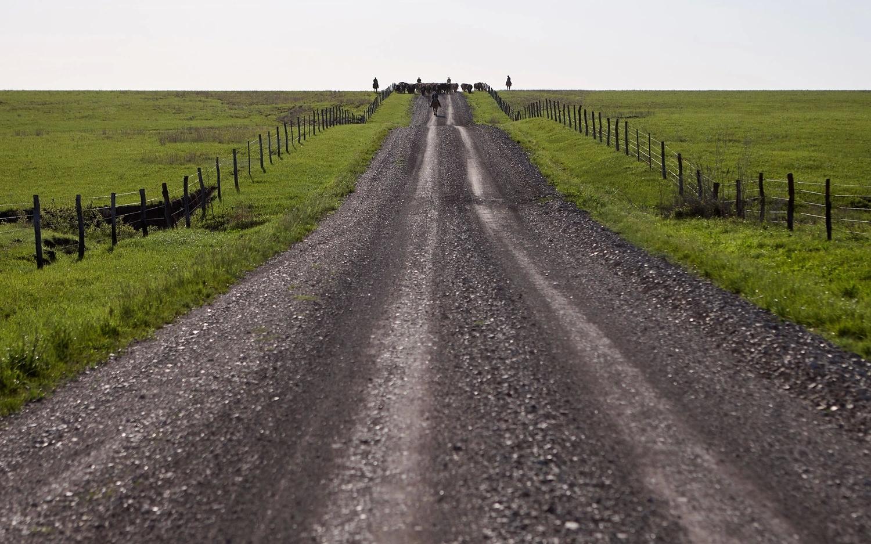 Дорога на ранчо