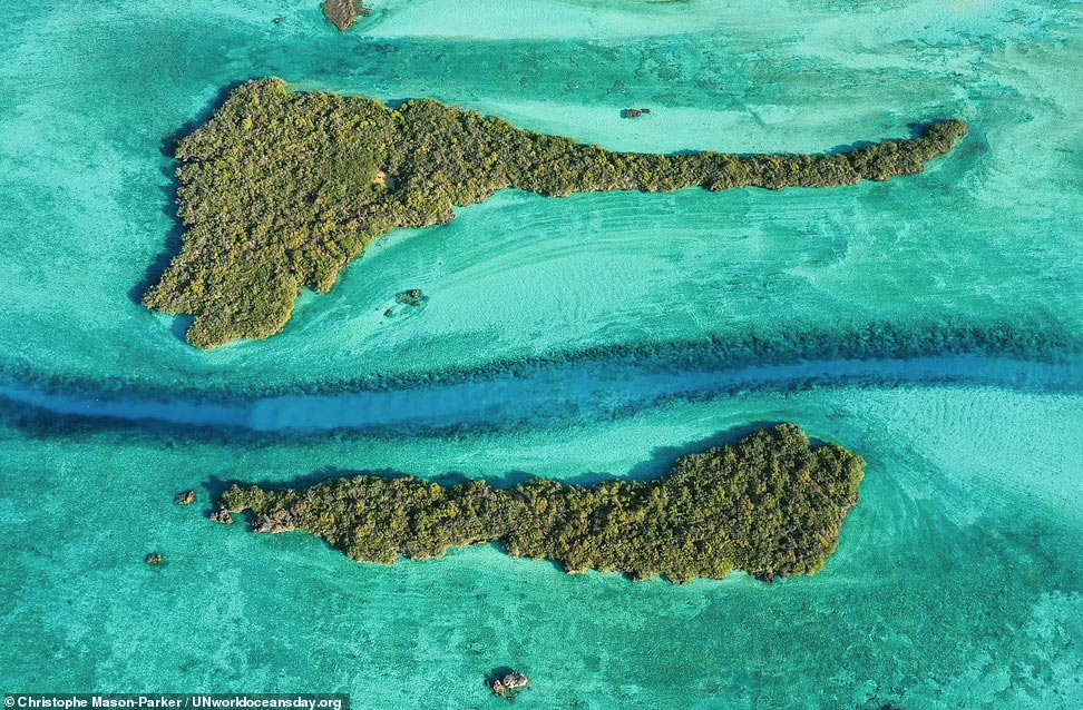 Пейзажи с Сейшельских островов