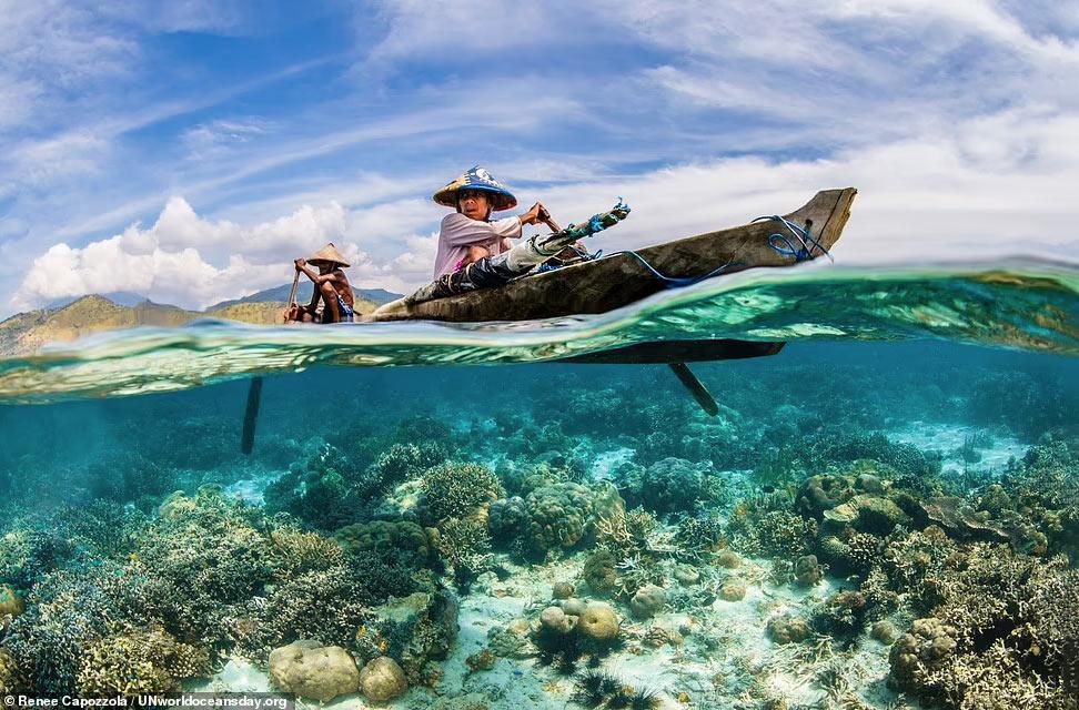 Коралловый риф у острова Адонара в Индонезии